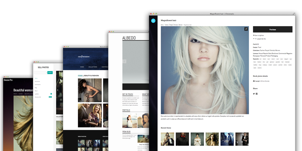 WordPress photography e-commerce themes