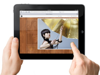 Sleek Gallery Interface