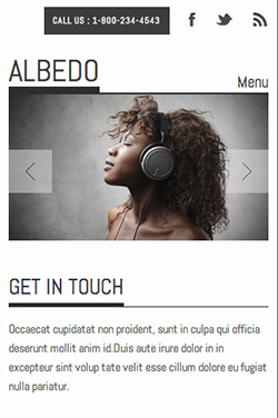 Albedo responsive wordpress theme