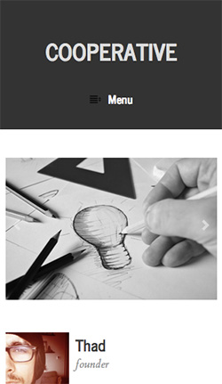 Cooperative responsive wordpress theme