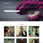 stock-photography-wordpress-theme-large