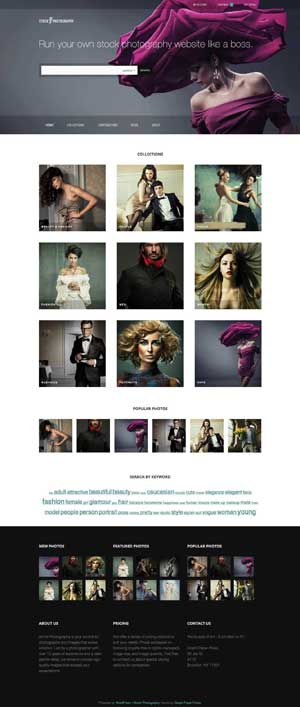 stock photography wordpress theme