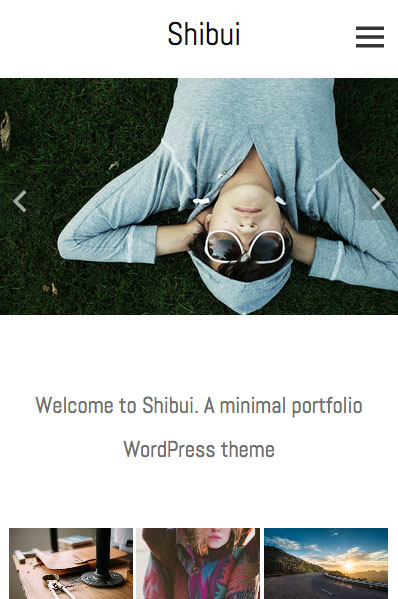 Shibui responsive wordpress theme