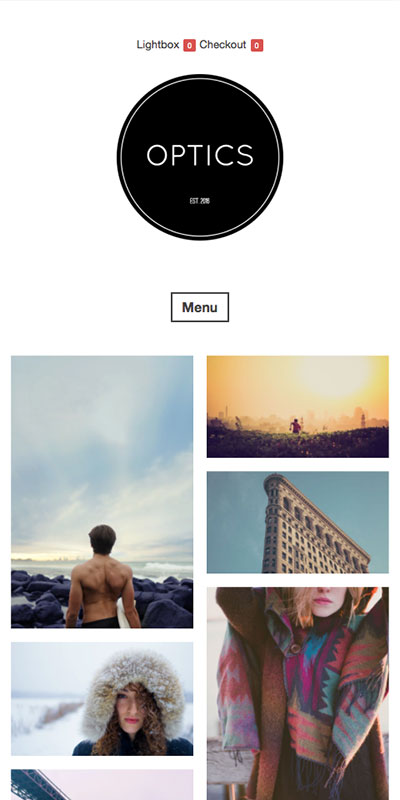 Optics responsive wordpress theme